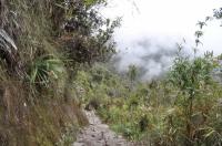 Machu Picchu travel August 20 2011