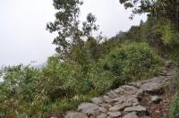 Machu Picchu trip August 20 2011