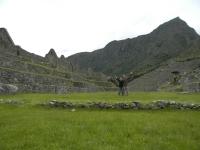 Machu Picchu travel Dec 22 2011