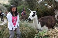 Machu Picchu Inca Trail May 19 2012-4