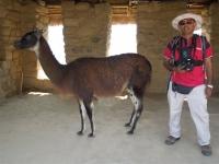 Machu Picchu Salkantay Aug 27 2012-8