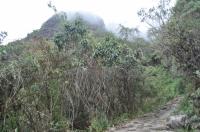 Peru trip October 22 2012-1