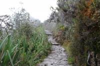 Machu Picchu Inca Trail Jan 19 2013-6