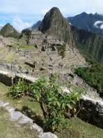 Machu Picchu Inca Trail Jan 12 2013-4