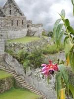 Machu Picchu Inca Trail Jun 07 2013-1