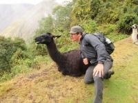 Machu Picchu trip Aug 23 2013
