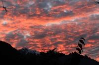 Gyorgy Inca Trail May 01 2014-1