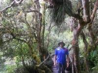 Machu Picchu trip May 20 2014-1