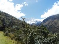 Peru vacation May 24 2014-1