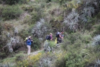 Emily Inca Trail March 27 2014-5