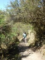Peru vacation August 15 2014-2