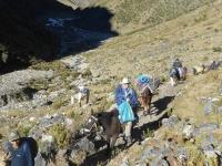 Peru vacation July 09 2014-4