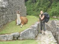 Peru trip November 16 2014-4