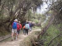 Peru trip November 04 2014-2