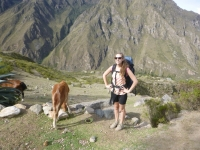 Machu Picchu vacation December 01 2014-12