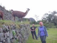 christine Inca Trail November 29 2014-1