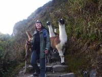 Machu Picchu travel July 03 2015-6