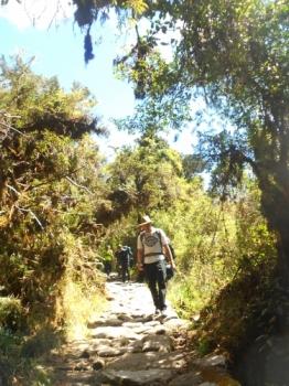 Brett Inca Trail August 17 2015-1