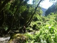Peru travel May 20 2015-5