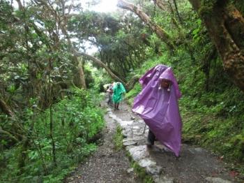 Katherine Inca Trail March 06 2016-1