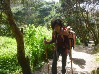 Machu Picchu trip March 16 2016-5
