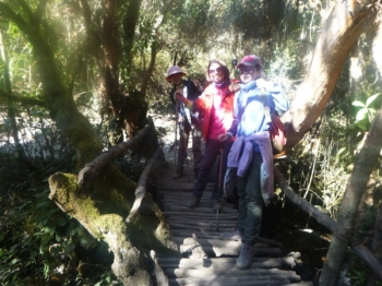 ling Inca Trail August 03 2017-2