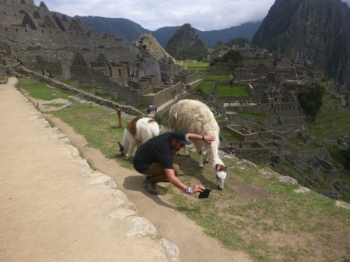 Luke Inca Trail October 02 2017-1