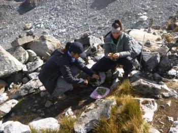 Peru vacation September 02 2017-2